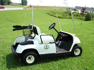 Yamaha Golf Cart (2000 Pre-Owned)