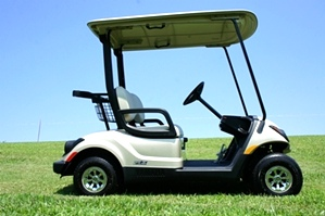 Yamaha Gas EFI Drive Golf Car  2014  PTV