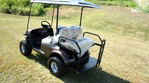 EZGO Express 2017 S4 New 2 Year Warranty