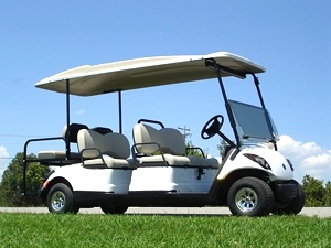 Yamaha Concierge 4-Passenger with Rear Facing Seat