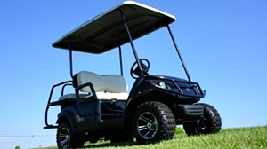 Yamaha Adventure 2 + 2 EFI  Gas  Golf Car Utility Cart