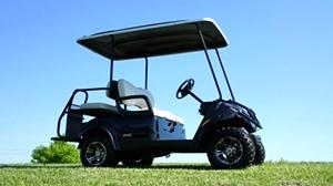 Yamaha Adventure 2 + 2 EFI  Gas  Golf Car Utility Cart