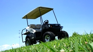 EZGO Express  S4 HO High Output 48 Volt Golf Cart