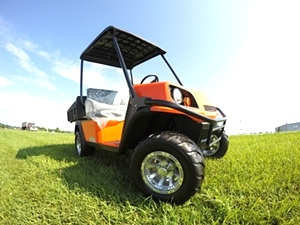 Terrian 250 Golf Car